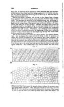 Side 752