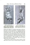 Side 483