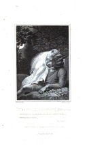 Side 218