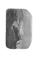 Side 335