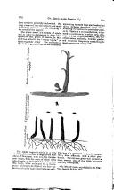 Side 276