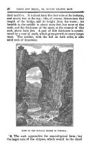 Side 46