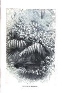 Side 395