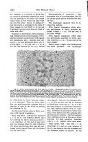 Side 1008