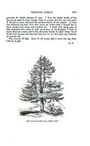 Side 345